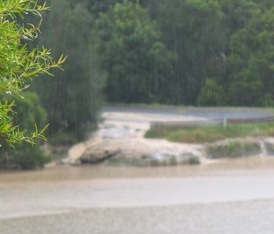 mud washing into Lane Cove River from Boronia Park Oval 3