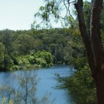 Boronia Park, Lane Cove River