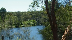 Boronia Park LC river