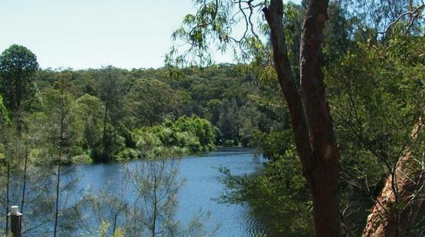 Boronia Park, Lane Cove River