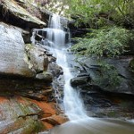 Tipperary Falls, Boronia Park