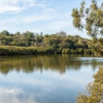 some of what we have in Hunters Hill Image:  Lane Cove River and Lovetts Reserve