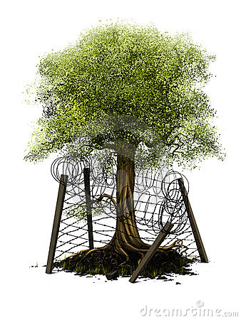 environment-protection-8691205