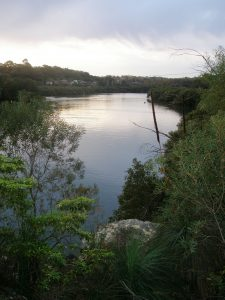Lane Cove River